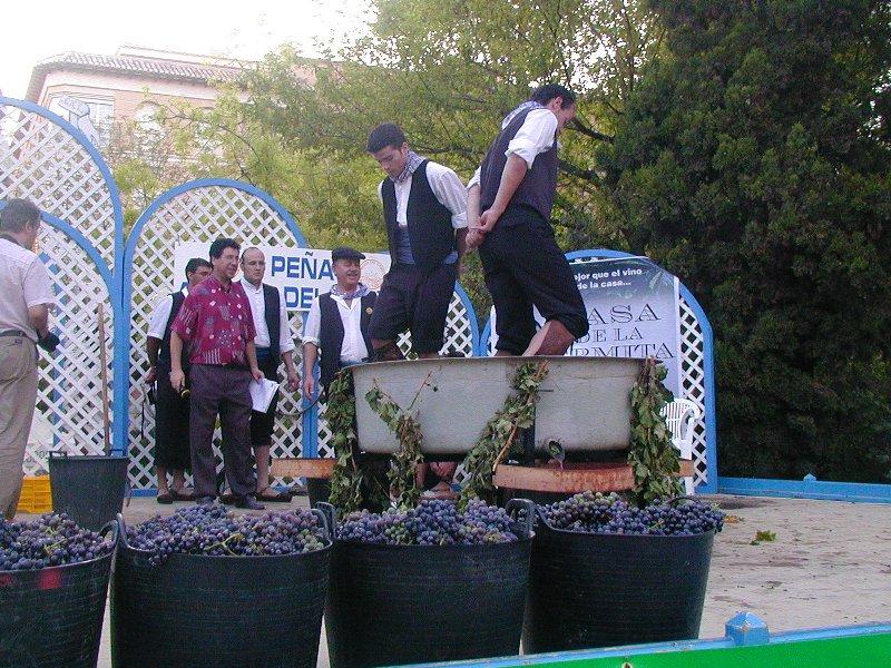 Concurso de pisaores - 2008