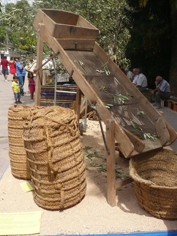 Carroza 2011 - Cogiendo oliva